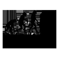 Webディレクターの転職・キャリアアップを支援する情報メディア